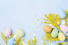 Ostern-Hintergrund mit Mimosenblume und bunten Eiern Platz für Ihren Text Raum für Text Stockbilder