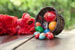 Ostern-Hintergrund mit Ostereiern und roten Tulpen Stockbilder