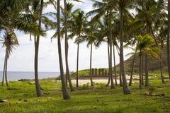 Ostern-Insel Stockbilder