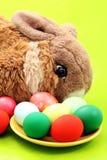 Ostern-Kaninchen mit Eiern auf Grün Stockfoto