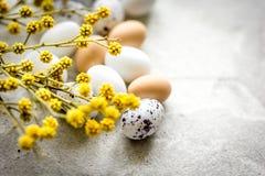 Ostern-Karte mit Eiern und Blume auf hellem Hintergrundmodell Lizenzfreies Stockfoto