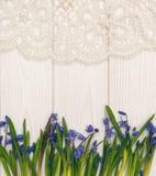 Ostern-Karte mit Frühlingsblumen und -spitze Stockfoto