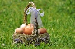 Ostern-Korb mit Eiern Stockfoto