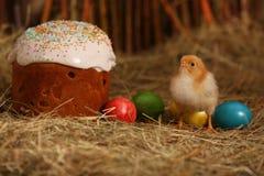 Ostern-Kuchen mit farbigen Eiern und Huhn Lizenzfreie Stockbilder