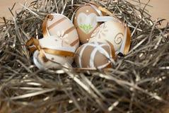 Ostern-Nest Lizenzfreie Stockfotos