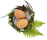 Ostern-Nest mit twio Eiern und Federn lizenzfreie stockbilder