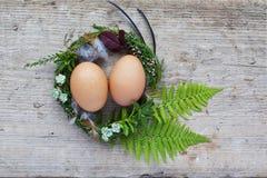Ostern-Nest mit zwei Eiern und Federn stockfotografie