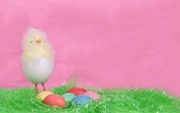 Ostern-nettes Küken und Eier Stockbild