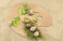 Ostern-Palettendekoration mit Wachteln Eiern und Hellebore Stockfotografie