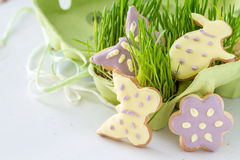 Ostern-Plätzchen mit Gras Stockbild