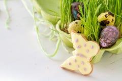 Ostern-Plätzchen und -eier mit Gras Stockfotografie