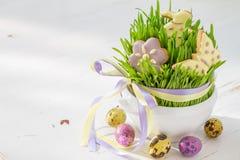 Ostern-Plätzchen und -eier mit Gras Lizenzfreie Stockbilder