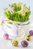 Ostern-Plätzchen und -eier mit Gras Lizenzfreies Stockbild