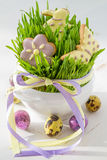 Ostern-Plätzchen und -eier mit Gras Lizenzfreie Stockfotografie