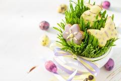 Ostern-Plätzchen und -eier mit Gras Lizenzfreies Stockfoto