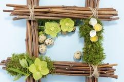 Ostern-Rahmen mit einem kochte Wachtelei in der rechten Ecke und zwei roh plus drei Helleboreblumen Lizenzfreie Stockfotografie