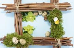 Ostern-Rahmen mit sieben Wachteleiern und zwei Helleboreblumen Lizenzfreie Stockbilder