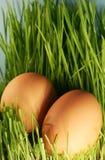 Ostern-Thema Lizenzfreies Stockbild