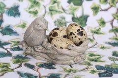 Über Vogelnest. Lizenzfreies Stockfoto