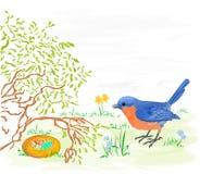 Ostern-Vogel mit Narzissen und Ostereiern Lizenzfreie Stockbilder