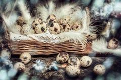 Ostern-Wachteleier im Korb mit Hyazinthen blüht auf dunklem hölzernem b stockbild