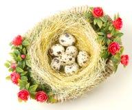 Ostern-Wachteleier im Nest Lizenzfreie Stockfotos