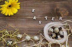 Ostern-Wachteleier im Nest auf hölzernem Hintergrund Stockbild