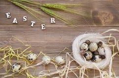 Ostern-Wachteleier im Nest auf hölzernem Hintergrund Stockfotografie