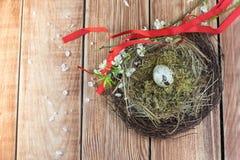 Ostern - Weidennest mit Wachtel-Ei mit blühenden Niederlassungen und lizenzfreies stockfoto