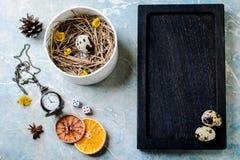 Ostern-Zusammensetzung von Wachteleiern im Nest Lizenzfreie Stockbilder