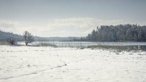 Osterseen witner scenery Stock Photo