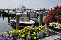 Osterville, MA: Osterville Marina and Boats Stock Image