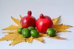 Ostfrüchte Stockfoto