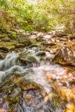 Ostgabel des Flusses Stockfoto