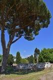 Ostia Antica Ruins Royalty Free Stock Photo