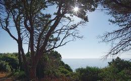 Ostküste von Korsika-Insel stockfoto