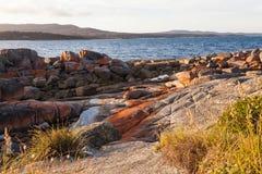 Ostkust av Tasmanien Arkivbild