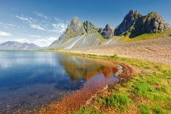 Ostkusten av Island royaltyfri bild