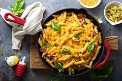 Ostliknande pasta bakar med jordnötkött och örter royaltyfri fotografi