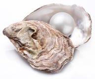 Ostra con la perla aislada Imagenes de archivo