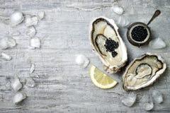 Ostras abiertas con el caviar y el limón negros del esturión en el hielo en placa de metal en fondo concreto gris Visión superior foto de archivo libre de regalías