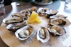 Ostrica fresca dall'azienda agricola dell'ostrica fotografia stock