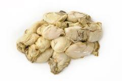 Ostrica su bianco Fotografia Stock