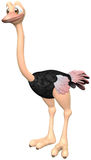 Ostrich. Toon ostrich with isolation on a white background Royalty Free Stock Photography