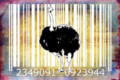 Ostrich barcode animal design art idea. I am a traditional artist. This is digital painting and 3d software compilation. This is my own idea Royalty Free Stock Image