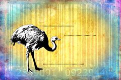Ostrich barcode animal design art idea Royalty Free Stock Photography