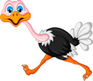 Ostrich cartoon running Royalty Free Stock Photo