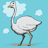 Ostrich Cartoon Royalty Free Stock Image