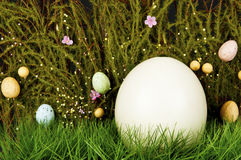 Ostrich egg in green grass. Easter concept Royalty Free Stock Images