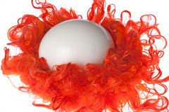 Ostrich egg in red nest Royalty Free Stock Images